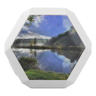 landscape white bluetooth speaker