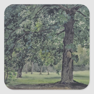 Landscape with Chestnut Tree in the Foreground Square Sticker