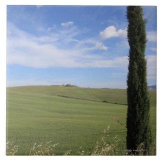 Landscape with Cypress Ceramic Tile