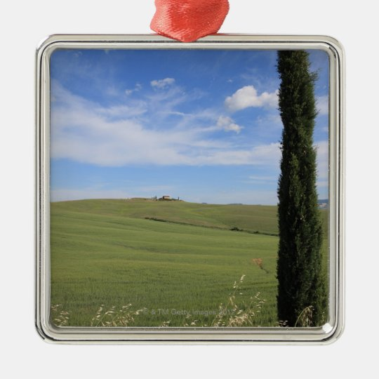 Landscape with Cypress Metal Ornament