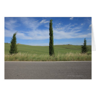 Landscape with Cypresses Card