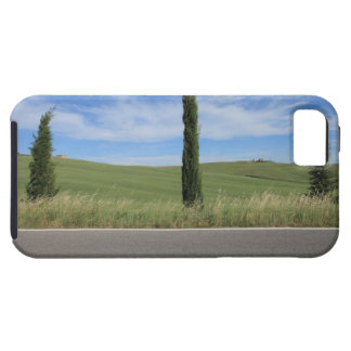 Landscape with Cypresses iPhone 5 Cases