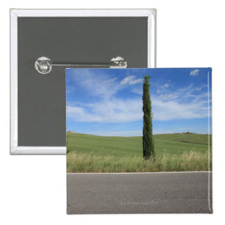 Landscape with Cypresses Pinback Button