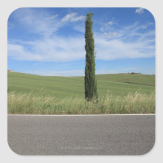 Landscape with Cypresses Square Sticker