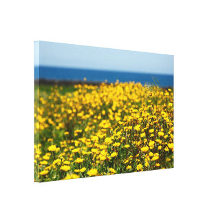 Landscape with daisies canvas print