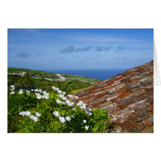 Landscape with daisies greeting cards