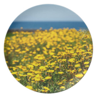 Landscape with daisies melamine plate