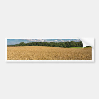 Landscape with grainfield and blue sky bumper sticker