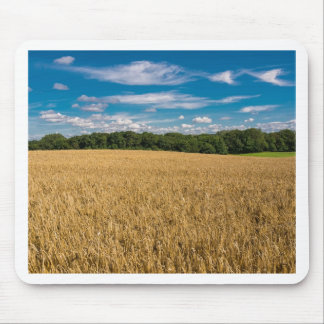 Landscape with grainfield and blue sky mouse pad