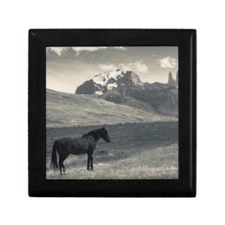 Landscape with horses 2 jewelry box