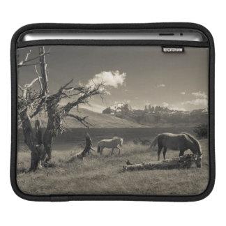 Landscape with horses iPad sleeve