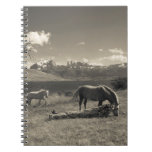 Landscape with horses notebook