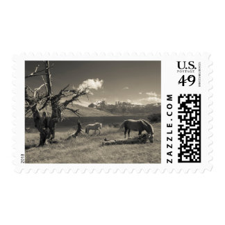 Landscape with horses postage stamp