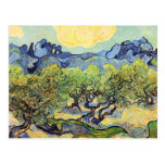 Landscape with olive Trees by Vincent van Gogh Postcard