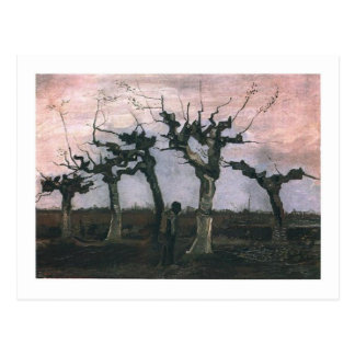 Landscape with Pollard Willows 1883 Postcard