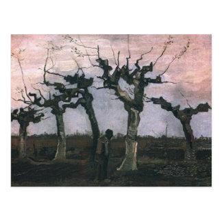 Landscape with Pollard Willows Postcard