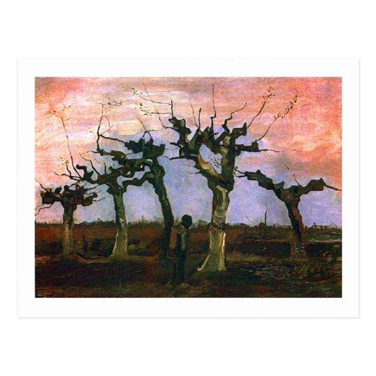 Landscape with Pollard Willows, Vincent van Gogh Postcard