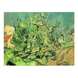 Landscape with three trees and houses by van Gogh Postcard