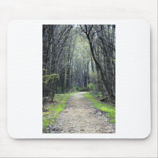 Landscapes and Lighthouses - A Path Less Traveled Mouse Pad