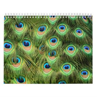 Landscapes, Patterns, Bursts of Color Calendar