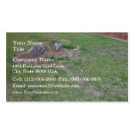 Landscaping Ideas to Cover a Tree Stump Business Card