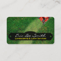 Landscaping/Lawn