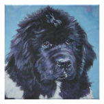 landseer Newfoundland puppy art print