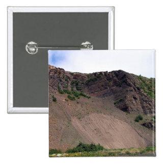 Landslide 1 Button
