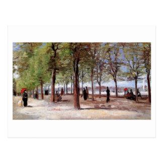 Lane at the Jardin du Luxembourg, Vincent van Gogh Post Cards