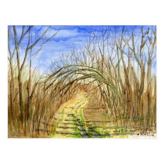 """""""Lane with Arched Branches"""" watercolor landscape Postcard"""