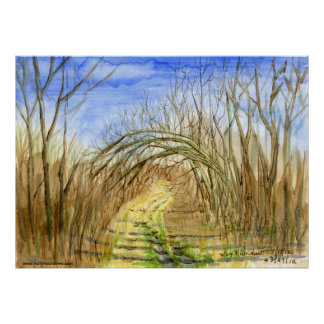 """Lane with Arched Branches"" watercolor landscape Poster"