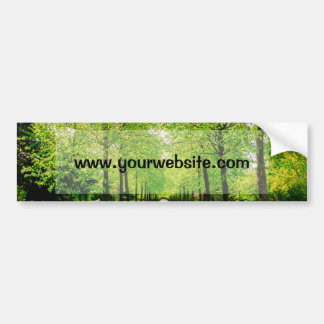 Lane With Green Trees On A Sunny Day Bumper Sticker