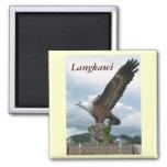 Langkawi Eagle Refrigerator Magnet