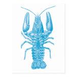 Langosta azul tarjeta postal
