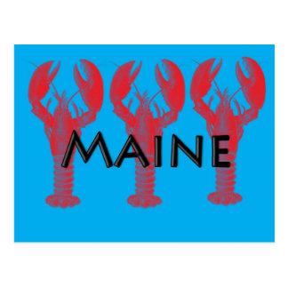 langosta de Maine Postal
