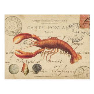 Langosta del vintage y postal de los seashells