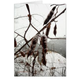 Langosta erizada del invierno tarjeta de felicitación