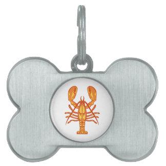 Langosta Placa Mascota