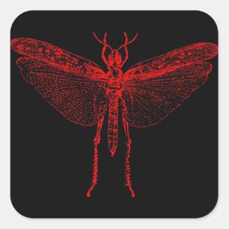 Langosta roja pegatina cuadrada