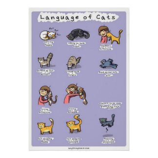 language of cats poster