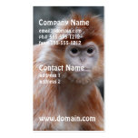 Langur Business Cards
