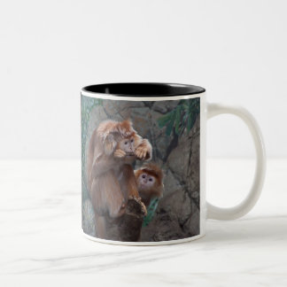 Langur Chews Stick While Other Monkey Watches Two-Tone Coffee Mug