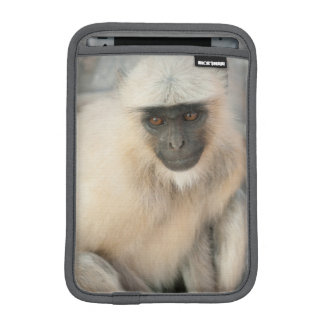 Langur Monkey, Amber Fort, Jaipur, Rajasthan Sleeve For iPad Mini