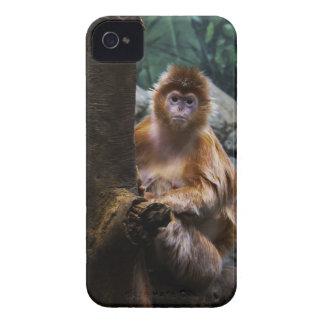 Langur Monkey Case-Mate iPhone 4 Case