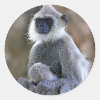 Langur monkey classic round sticker