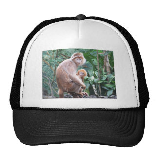Langur Monkey Mother & Baby Trucker Hat
