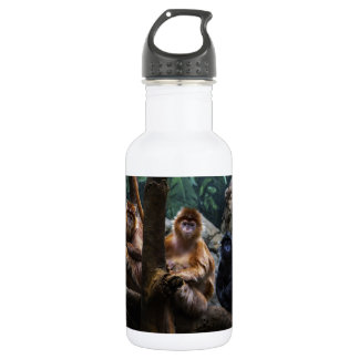 Langur Monkey Stainless Steel Water Bottle