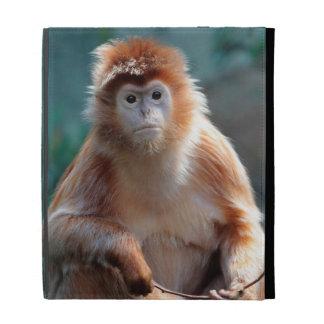 Langur Monkey Wildlife Animal Photo iPad Folio Covers