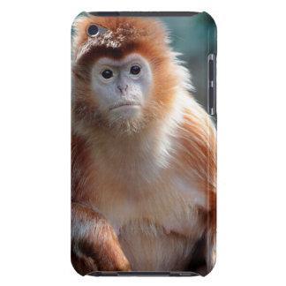 Langur Monkey Wildlife Animal Photo iPod Case-Mate Cases