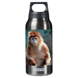 Langur Monkey Wildlife Animal Photo Insulated Water Bottle